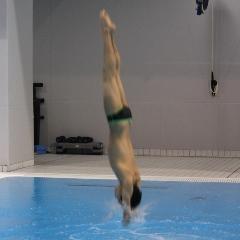 水泳飛込 サムネ