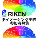 理化学研究所 脳イメージング実験参加者募集